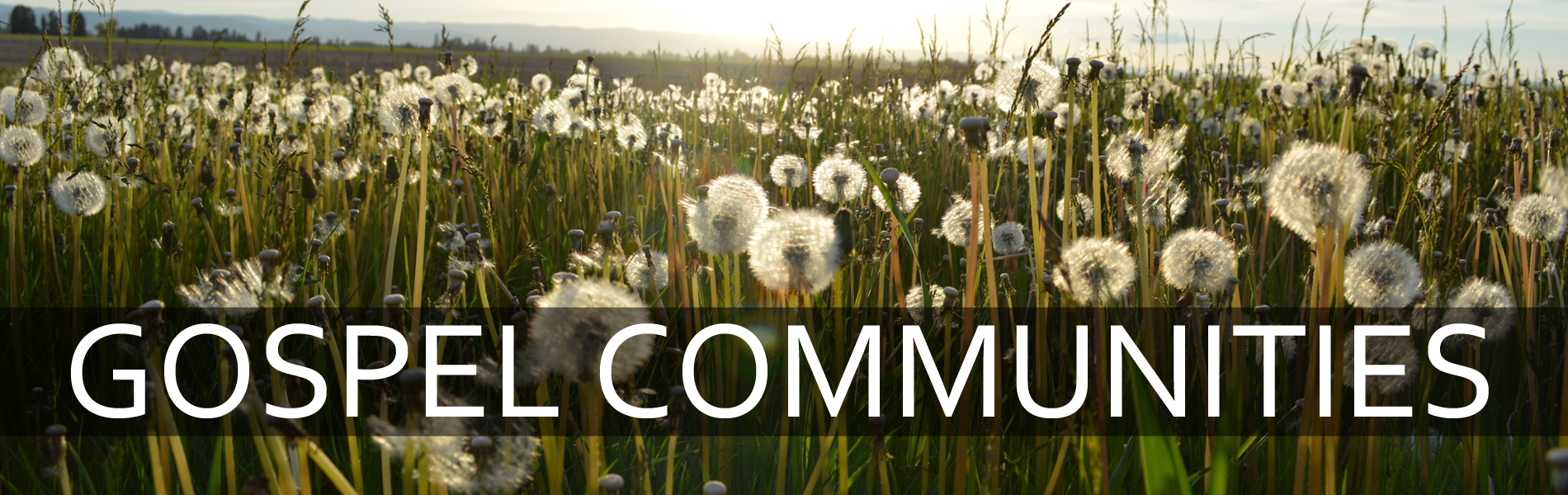 gospel communities